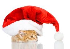 在红色圣诞节圣诞老人帽子的逗人喜爱的小的小猫 库存照片