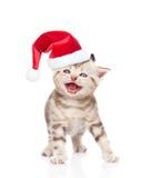 在红色圣诞节帽子的喵喵叫的小猫 背景查出的白色 库存照片