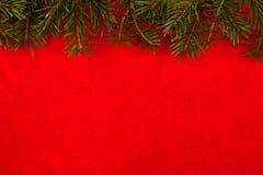 在红色天鹅绒上的树枝 免版税库存图片