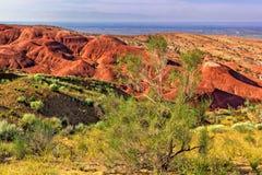 在红色山和蓝天背景的绿色灌木  库存图片