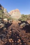 在红色岩石全国保护地区的沙漠足迹在内华达 库存照片