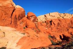 在红色岩石峡谷的象面孔的岩石 库存图片
