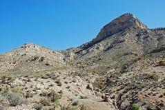 在红色岩石峡谷,拉斯维加斯,内华达的Turtlehead峰顶 库存图片