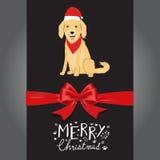 在红色帽子手信件的圣诞快乐金黄Retreiver狗 免版税库存图片