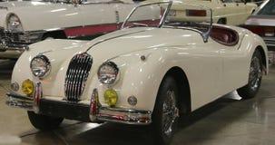 1955在红色捷豹汽车XK140敞篷车汽车的白色正面图  免版税库存照片