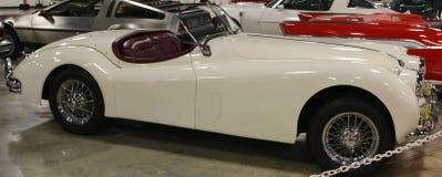 1955在红色捷豹汽车XK140敞篷车汽车的白色 免版税库存图片