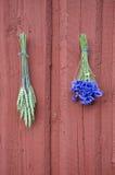 在红色木农厂墙壁上的麦子和矢车菊束 免版税库存照片