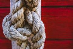 在红色木背景的绳索结 免版税图库摄影