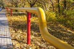 在红色杆的黄色煤气管在秋天公园 免版税库存照片