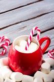 在红色杯子的热巧克力 免版税图库摄影