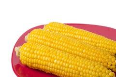 在红色板材的煮熟的玉米 库存照片