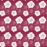 在红色样式传染媒介的白玫瑰 皇族释放例证