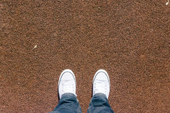 在红色格子呢运动场与两双鞋子,个人perspec的腿 库存照片