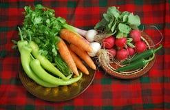 在红色格子花呢披肩的新鲜蔬菜 免版税库存照片