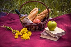 在红色毯子的野餐篮子在自然 苹果,白葡萄酒, 免版税库存照片