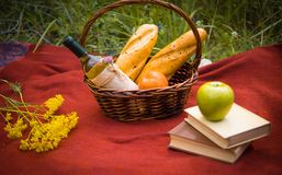 在红色毯子的野餐篮子在自然 苹果,白葡萄酒, 库存图片