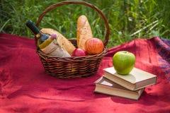 在红色毯子的野餐篮子在自然 苹果,白葡萄酒, 库存照片