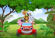 在红色汽车的动画片动物非洲 免版税库存照片