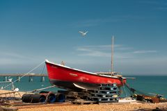 在红色渔船上的海鸥飞行 免版税库存照片
