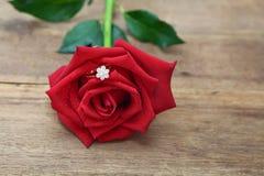 在红色玫瑰花瓣掩藏的钻戒 库存照片