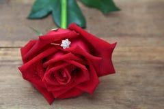 在红色玫瑰花瓣掩藏的钻戒 库存图片