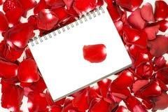 在红色玫瑰花瓣的笔记本 图库摄影
