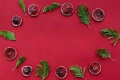 在红色的成熟新鲜的桔子上色了背景文本的顶视图空间 免版税库存照片