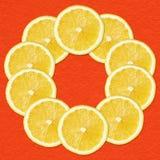 在红色的柠檬切片 免版税库存图片