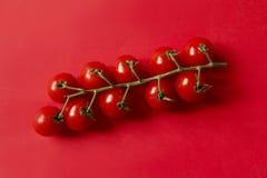 在红色的群蕃茄 免版税库存图片