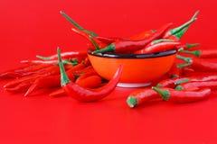 在红色的辣椒 免版税库存图片