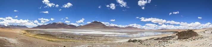 在红色盐水湖,玻利维亚的风景 免版税库存照片