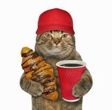 在红色盖帽的猫用新月形面包 库存图片