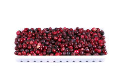 在红色盘白色的蔓越桔 免版税库存照片