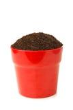 在红色罐的土壤 免版税库存图片