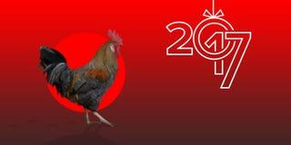 在红色背景的多角形雄鸡来克亨鸡公鸡 免版税库存照片