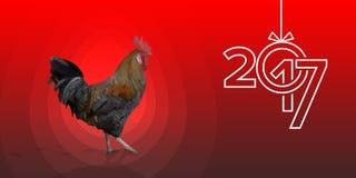 在红色背景的多角形雄鸡来克亨鸡公鸡 库存照片