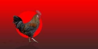 在红色背景的多角形雄鸡来克亨鸡公鸡 库存图片