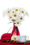 在红色花瓶的白花花束 免版税库存图片