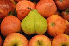 在红色苹果中的绿色梨 图库摄影