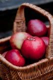 在红色苹果的婚戒 免版税图库摄影