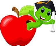 在红色苹果的蠕虫 库存照片