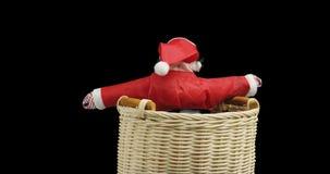 在红色衣服的Santta克劳斯玩具在黑背景的柳条筐 影视素材