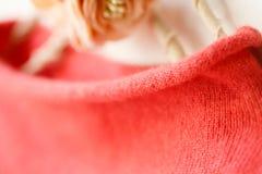 在红色,秋天,冬天的美丽,豪华,被编织的高脖子毛线衣,温暖 库存图片