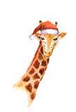 在红色santa& x27的圣诞节长颈鹿; s帽子 水彩动物 库存图片