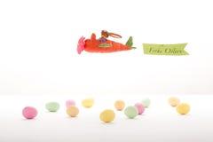 在红萝卜飞机的复活节兔子飞行 免版税库存图片