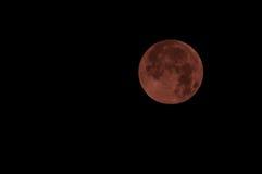 在红颜色的红色满月也叫bloodmoon 免版税库存照片