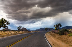 在约书亚树国家公园,加利福尼亚,美国的高速公路 库存图片