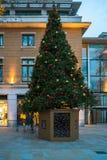 在约克公爵广场的装饰的圣诞树在伦敦英国 免版税库存图片