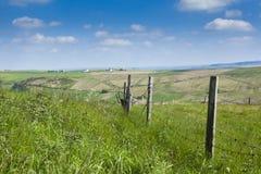 在约克夏风景的铁丝网篱芭 免版税库存图片