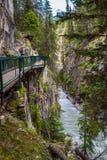 在约翰斯顿峡谷,弓谷大路,加拿大的走道 免版税库存照片